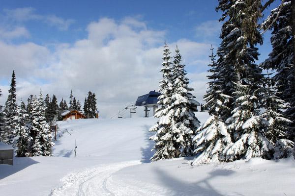 Cortesia: Whistler (CAN) – Foto arquivo data 03/11/2011 A situação climática atual é realmente bizarra: enquanto as montanhas da Europa estão praticamente verdes sem nenhum sinal de neve, especialmente nas regiões dos Alpes e dos...